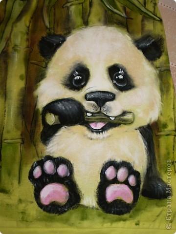 Детеныш панды фото 4