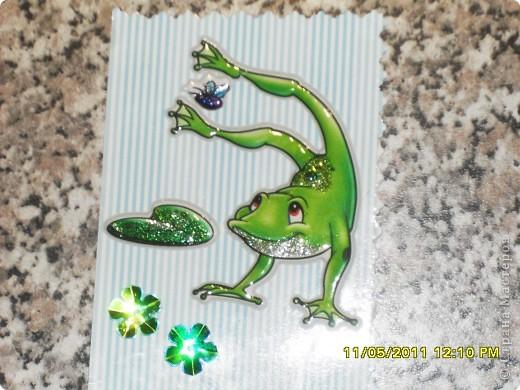 Лягушата решили устроить Весенние Олимпийские игры по ловле мух..... фото 3