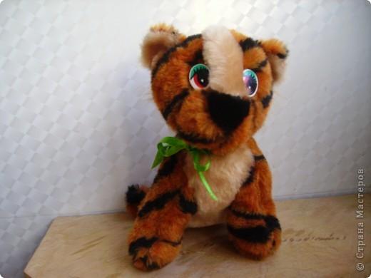 Вот мой тигрёнок. фото 1