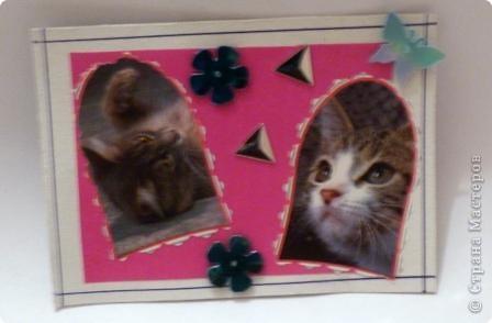 "АТС""Жили-были два кота,восемь лапок,два хвоста"" фото 5"