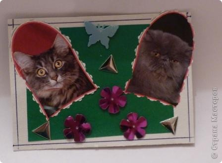 "АТС""Жили-были два кота,восемь лапок,два хвоста"" фото 3"