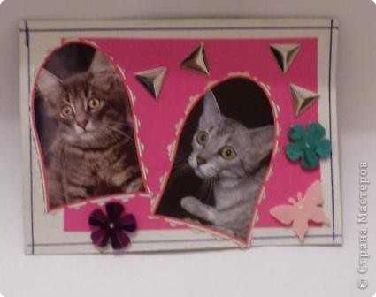 "АТС""Жили-были два кота,восемь лапок,два хвоста"" фото 2"