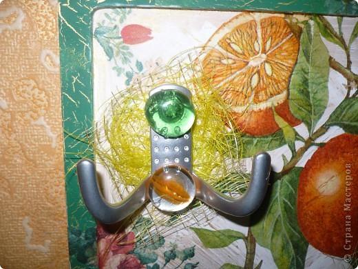 бутылка к моему во-о-он тому кофейному деревцу!!! фото 6