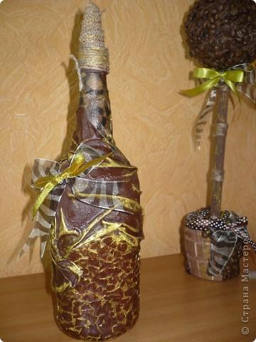бутылка к моему во-о-он тому кофейному деревцу!!! фото 1