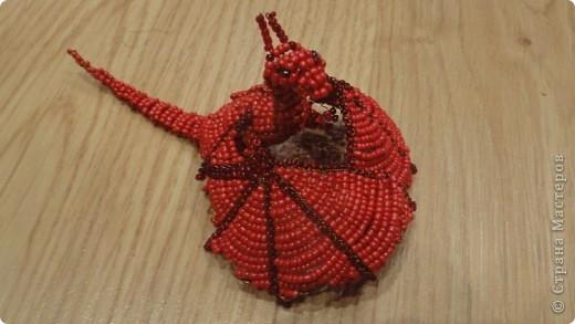 Красный дракончик фото 1