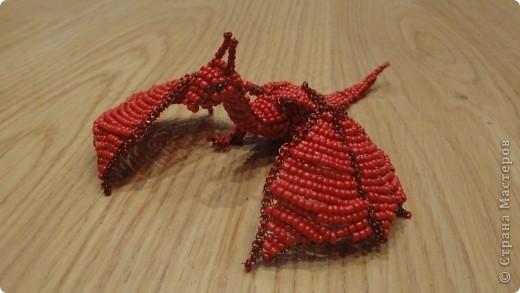 Красный дракончик фото 2