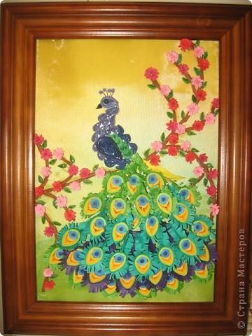 """""""Райская птичка"""" . Пыталась повторить работу Ольги Ольшак """"Царская птица"""". Вот что у меня получилось."""