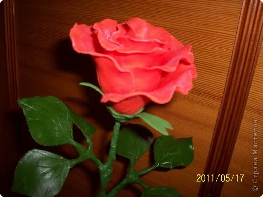 Моя первая роза из холодного фарфора фото 2
