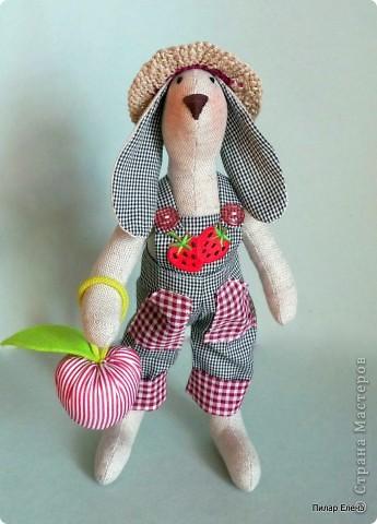 Садовый кролик Фома фото 1