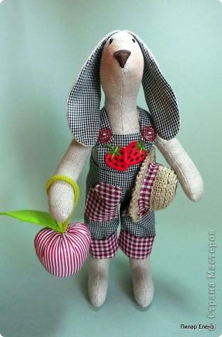 Садовый кролик Фома фото 2
