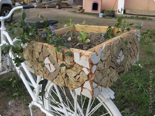 Вот такой трёхколёсный велосипед соорудили из обычного... фото 5