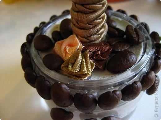 Ещё одно кофейное деревце я вырастила в подарок очень хорошему человеку - крестной моего младшего сына. Она большая любительница кофе, надеюсь подарок оценит. А мое первое дерево можно посмотреть здесь http://stranamasterov.ru/node/155462 фото 3