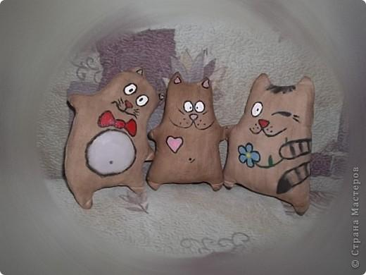 Кофейные котики фото 1