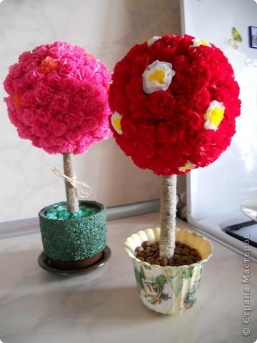 А вот и я наконец-таки нашла время показать свои деревца:)Цветочки делала как Vitulichka.Ствол закрепяля в горшочке с помощью строительного гипса (алибастра). В одном горшочке травку сделала (такими же цветочками как на кроне ,только зеленые).Во втором-приклеивала кофейные зернышки.Цветочки и зерна я приклеивала клеем для плиточных потолков.Сначала пробывала ПВА-не понравилось,ждать надо долго.А тут быстренько промазали цветочки,полежали они 3 мин и быстро обклеиваем бумажный шар(у меня комок из газеты,обкрученный нитками).Я еще свой газетный комок обкрутила зеленой гофробумагой,в случае,если будет просвет между цветочками. фото 1