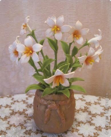 Захотелось сделать для мамочки что-нибудь миленькое, нежненькое....Вот такие цветочки получились. фото 3