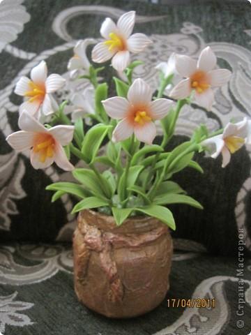 Захотелось сделать для мамочки что-нибудь миленькое, нежненькое....Вот такие цветочки получились. фото 5