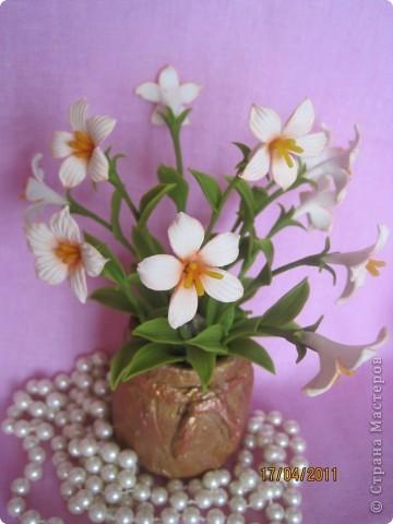 Захотелось сделать для мамочки что-нибудь миленькое, нежненькое....Вот такие цветочки получились. фото 1