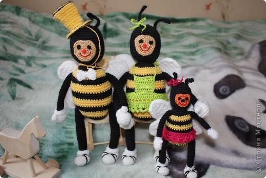Пчелиная семейка фото 1