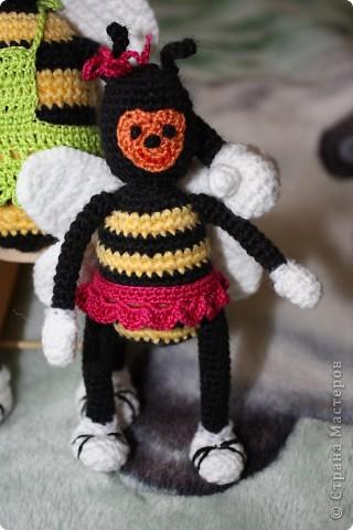 Пчелиная семейка фото 2