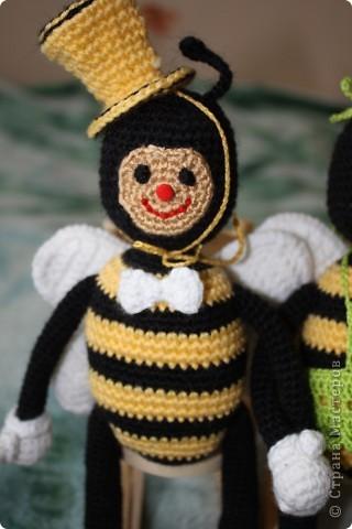 Пчелиная семейка фото 4