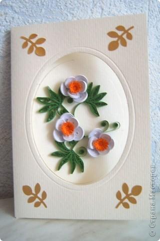 Здравствуйте Милые Мастерицы! Вот такая открытка  получилась у меня  в подарок подружке. Очень понравилось делать цветы, которые я увидела у Юлии  http://stranamasterov.ru/node/176647?c=favorite Очень красивые. Спасибо Вам Юлия за идею! Которую чуть дополнила!  Я взяла полоски 1,5 мм . Для нижних лепестков  склеивала  полоски по 3 шт, для верхних - по 2 полоски.  Придала форму капельки, обмазала клеем с наружной стороны. После высыхания собрала в цветок.  На серединку ушло- половинка жёлтой полоски 3 мм  и  четвертинка  (можно половинка) 7 мм, порезанной как на одуванчик.    фото 2