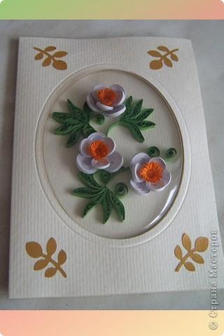 Здравствуйте Милые Мастерицы! Вот такая открытка  получилась у меня  в подарок подружке. Очень понравилось делать цветы, которые я увидела у Юлии  http://stranamasterov.ru/node/176647?c=favorite Очень красивые. Спасибо Вам Юлия за идею! Которую чуть дополнила!  Я взяла полоски 1,5 мм . Для нижних лепестков  склеивала  полоски по 3 шт, для верхних - по 2 полоски.  Придала форму капельки, обмазала клеем с наружной стороны. После высыхания собрала в цветок.  На серединку ушло- половинка жёлтой полоски 3 мм  и  четвертинка  (можно половинка) 7 мм, порезанной как на одуванчик.    фото 5