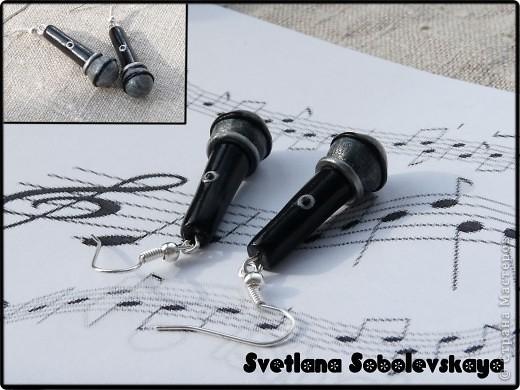 Миниатюра - серьги микрофоны