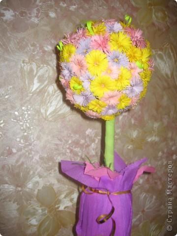 Дерево отправилось цвести  в садик)))))))) фото 3