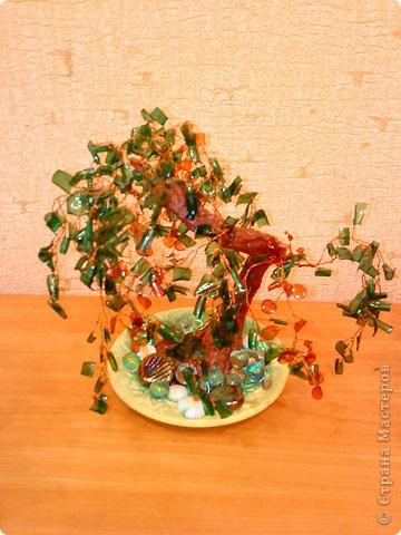 Деревья из пластиковых бутылок фото 1