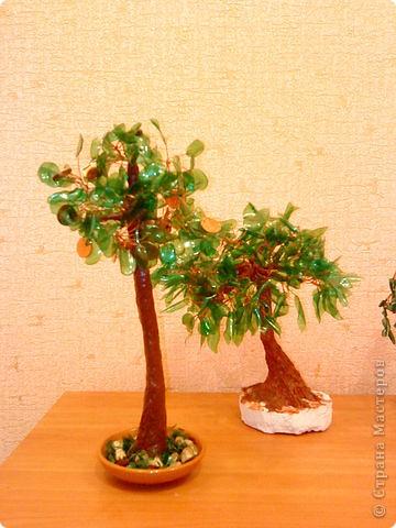 Деревья из пластиковых бутылок фото 2