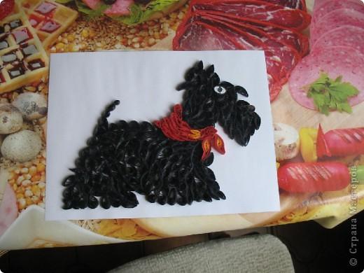 Подруга заказала подарок для мамы, в память о собаке( фото 1