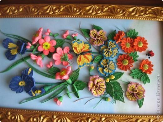 Вот и у меня расцвели весенние цветочки. фото 7