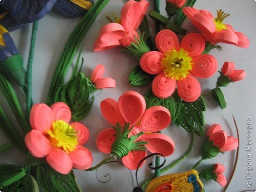 Вот и у меня расцвели весенние цветочки. фото 5