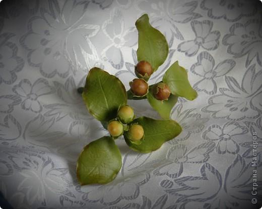 И снова орешки фото 3