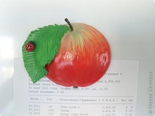 Яблоки. фото 6