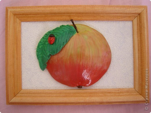Яблоки. фото 2
