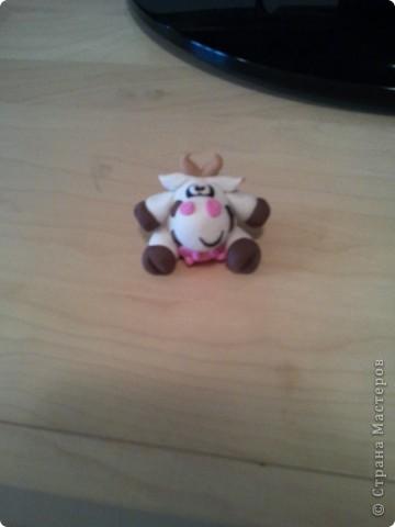 Коровки фото 1