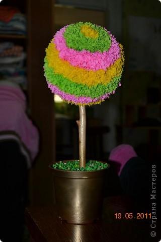 Мое второе деревце фото 1