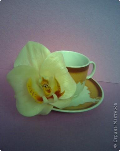"""Когда-то давно увлекалась цветами из ткани и соленым тестом и насколько помню всегда любила делать орхидеи. И теперь,увидев орхидеи Стеллы,""""не могу спокойно спать"""",за что ей огромное спасибо,потому что это развивает думалку))).Но молда у меня нет и поэтому """"голь на выдумки хитра"""" - ниже покажу свой """"позор"""" или точнее историю """"как я искала,чем бы таким заменить молд""""))))))) фото 1"""