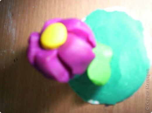"""цветок"" можно дарить на все праздники фото 5"