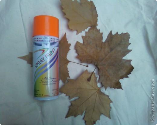 Рисуем на кленовых листьях хной! фото 2