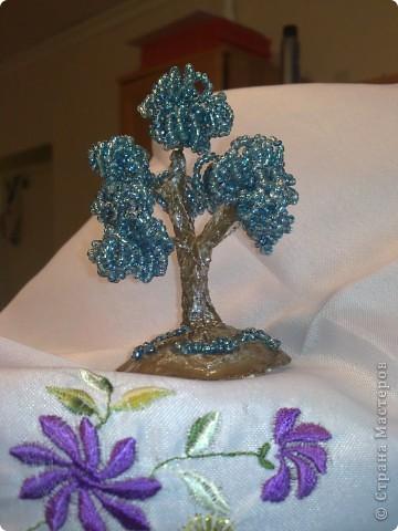 Деревце фото 2