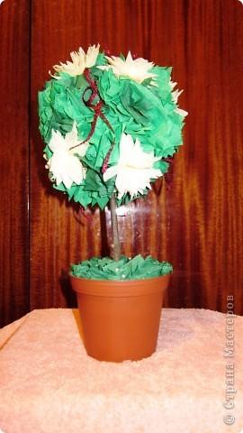 Деревья -- дубль N :) фото 1