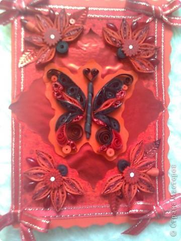 пеперуда в черено и черно фото 1