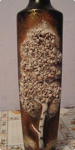 каменная березка фото 2