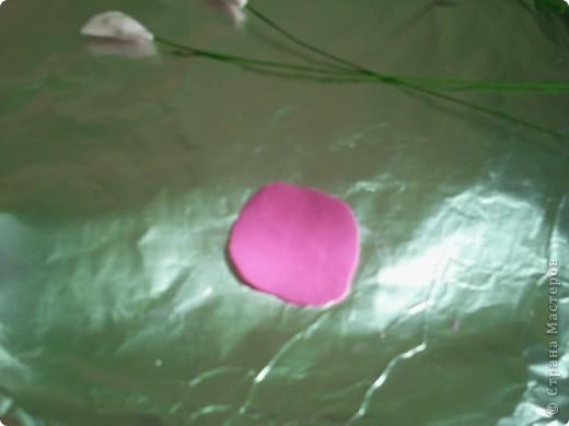 Уважаемые мастрецы. Я давно присматривалась к Душистому горошку, но не могла найти способ его лепки. пересмотрела несколько МК, фотографий этого астения в природе и вот, что у меня получилось. фото 10