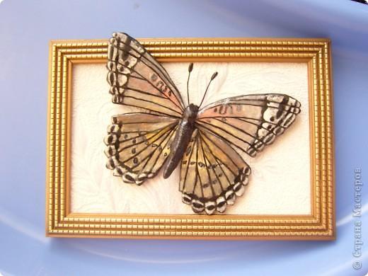Бабочка.По МК Решенсковой Екатерины. фото 2