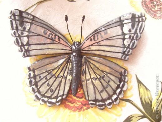 Бабочка.По МК Решенсковой Екатерины. фото 3