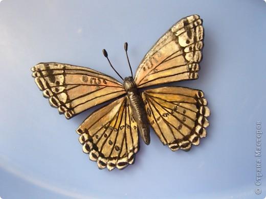 Бабочка.По МК Решенсковой Екатерины. фото 4