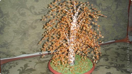 березка осень ствол из гипса фото 2